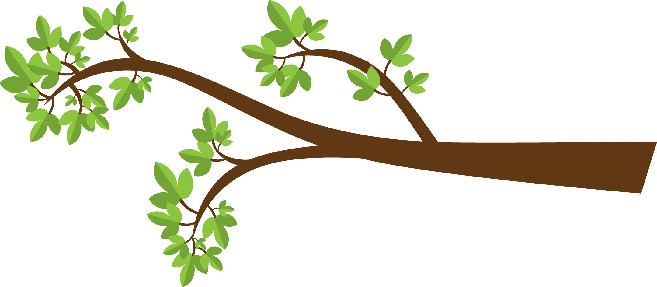 Tree Branche Clipart Best