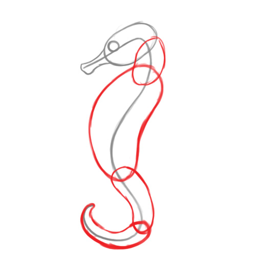 easy to draw seahorse - photo #20