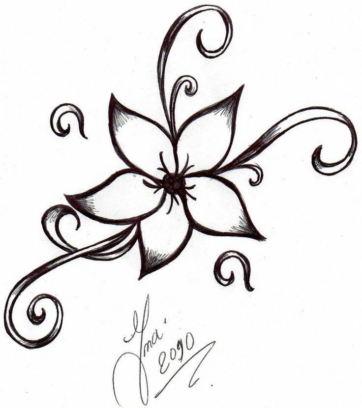 cute flower designs to draw on paper clipart best