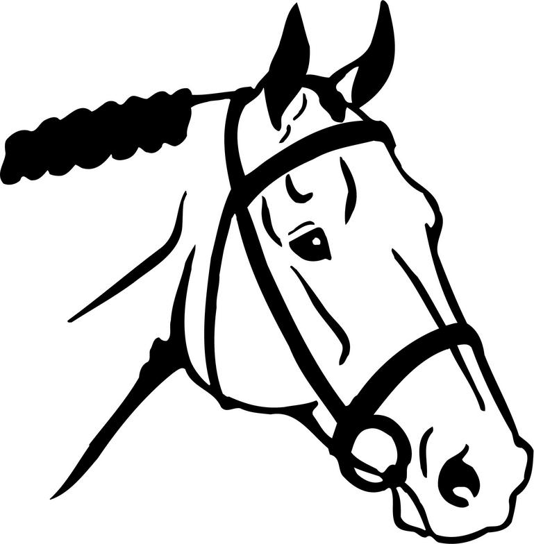 Horse Head Line Drawing - ClipArt Best