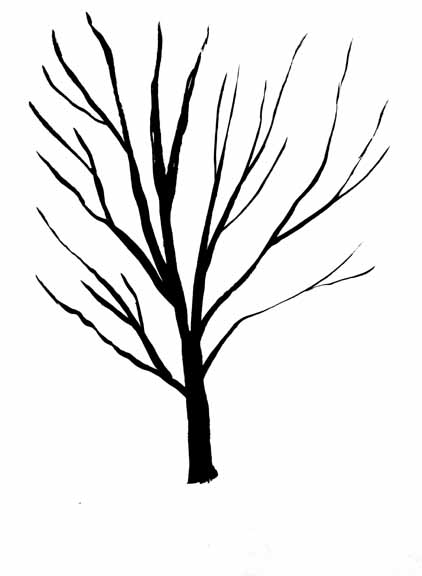 line drawing trees clipart best