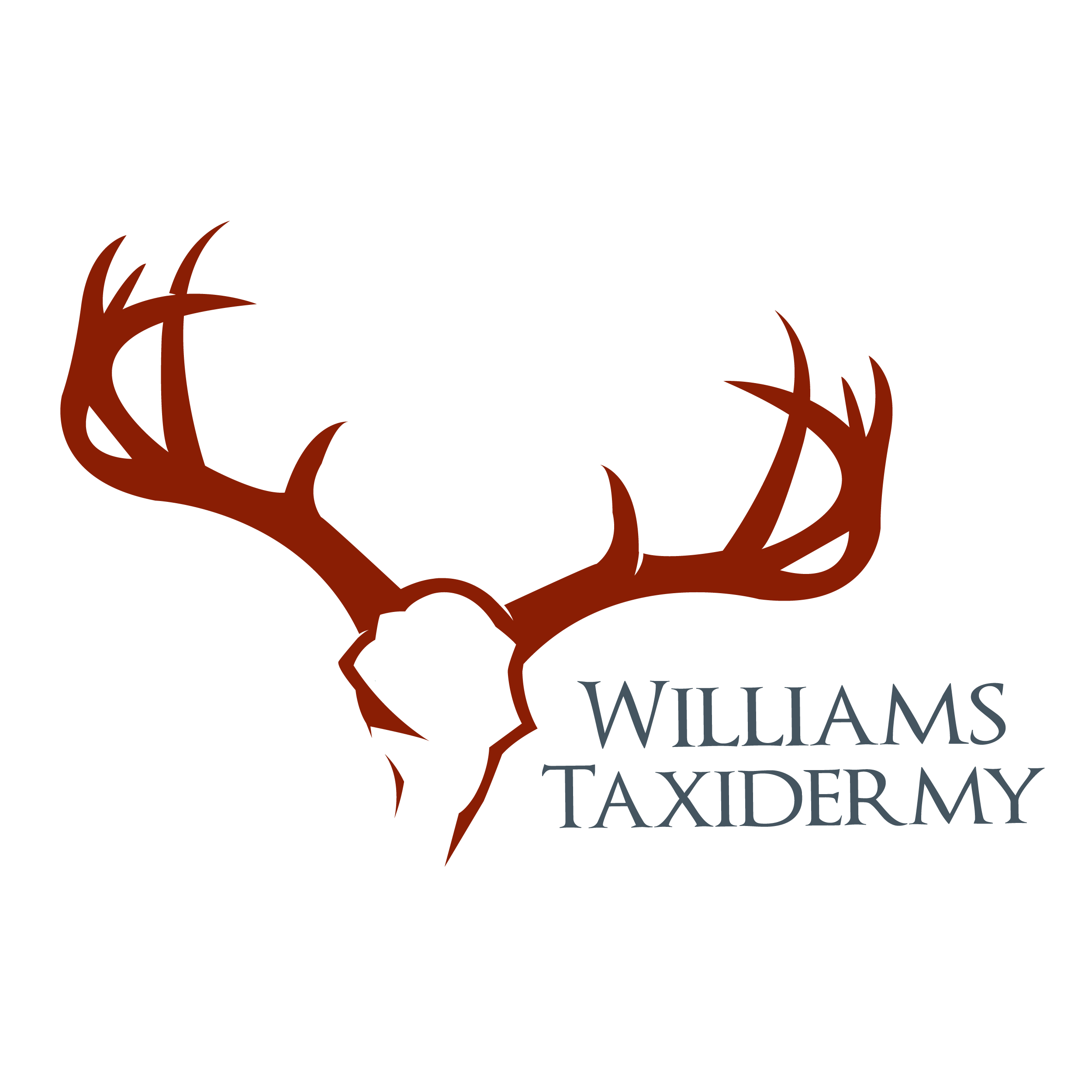 deer logo antlers clipart best Deer Head Logo Deer Skull Logo