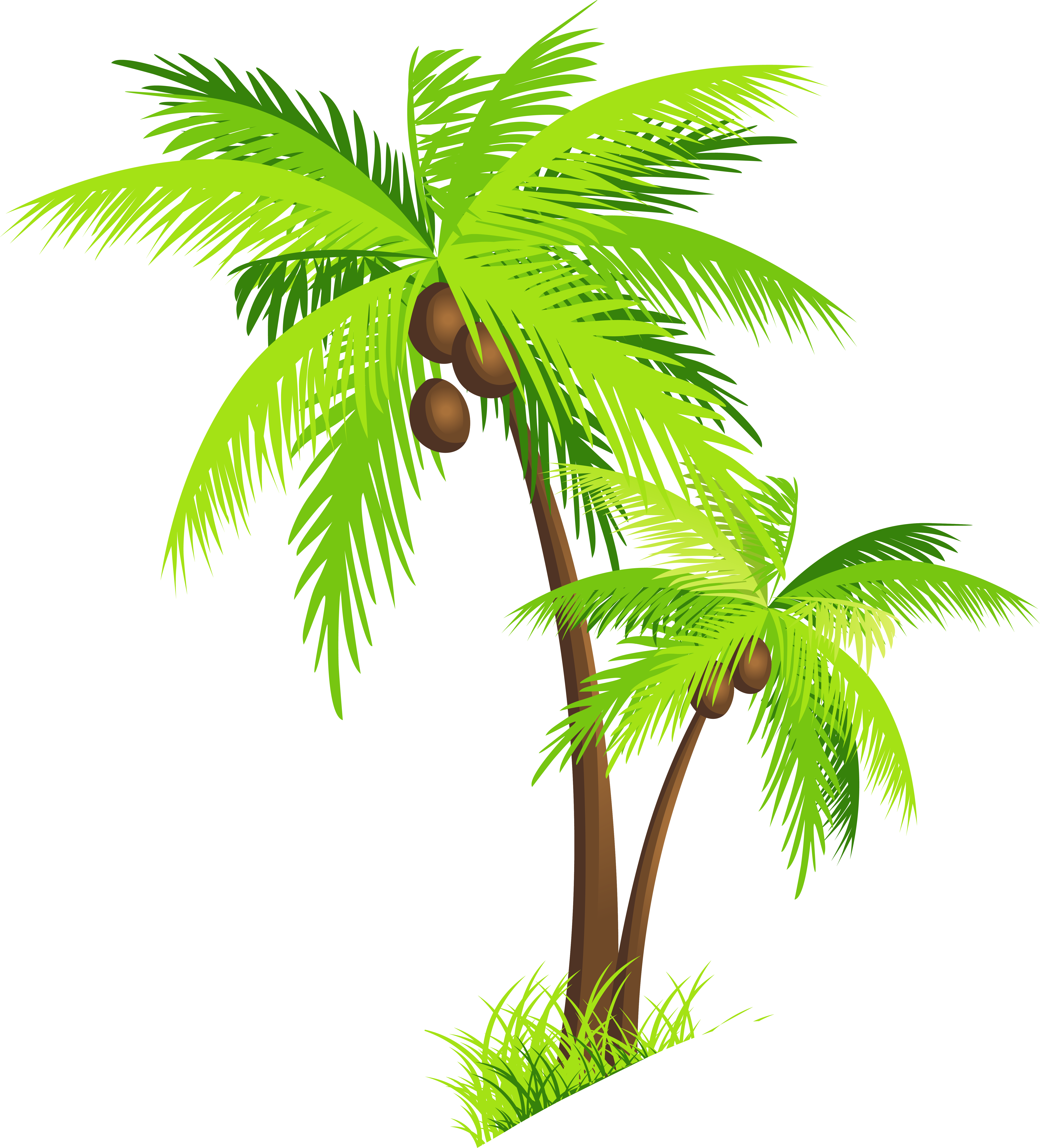 Vector Coconut Tree - ClipArt Best