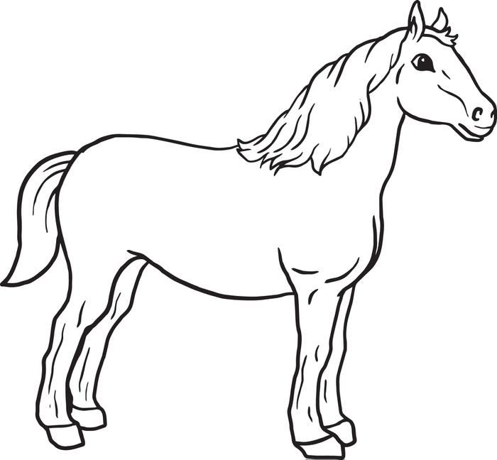 wild horse coloring pages of funnycoloring com animals ...