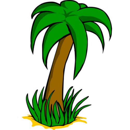 Tree Cartoon Images Cartoon Palm Tree