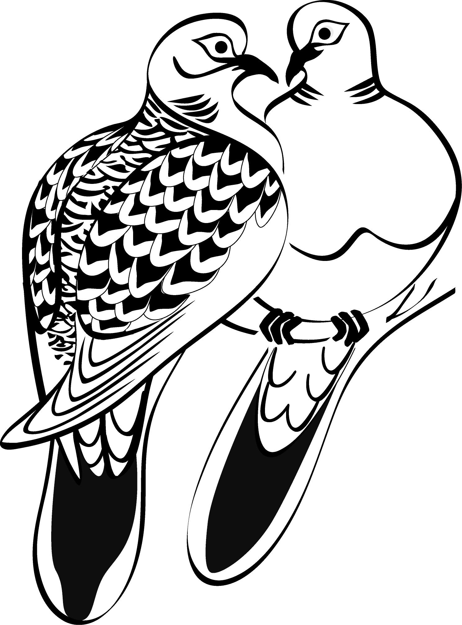 free clip art turtle doves - photo #4