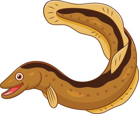 Clip Art Eel Clipart eel clipart best saltwater clip art vector images illustrations
