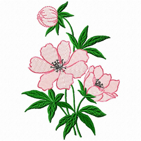 Machine Embroidery Floral Border Designs