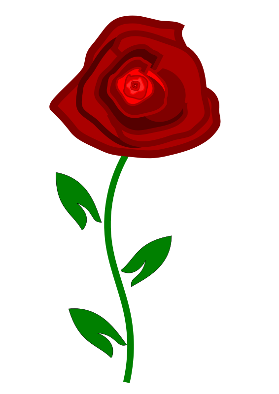 red rose png clipart best