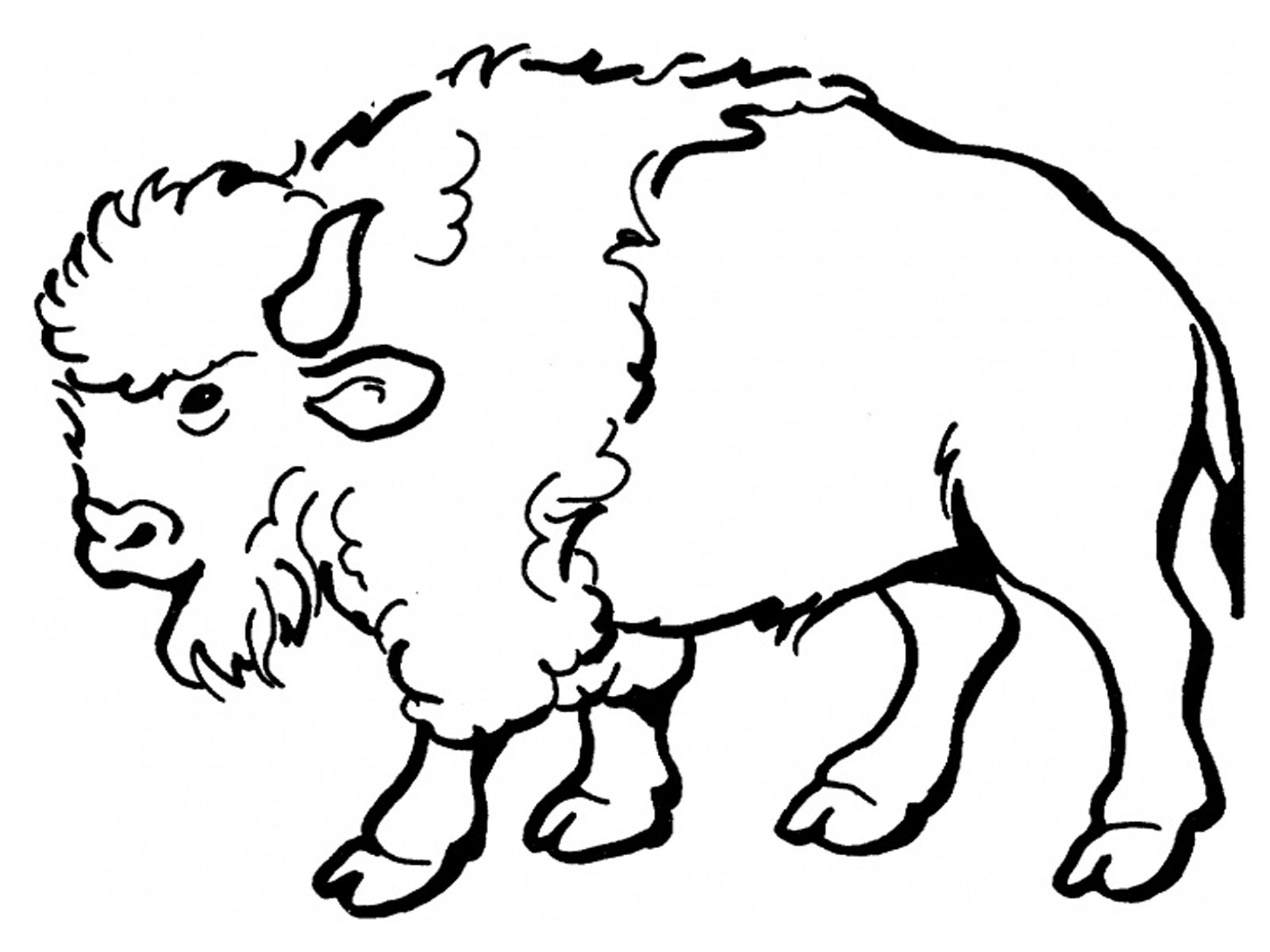 jpeg coloring pages - photo#25
