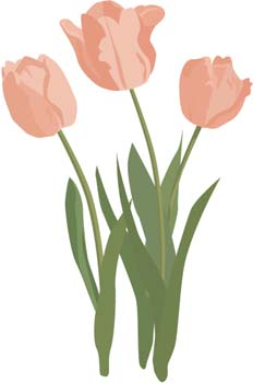 19 tulip flower template free cliparts that you can download to you ...