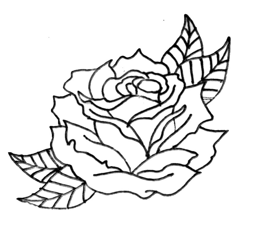 Rose Line Drawing Tattoo : Roses drawings outlines clipart best