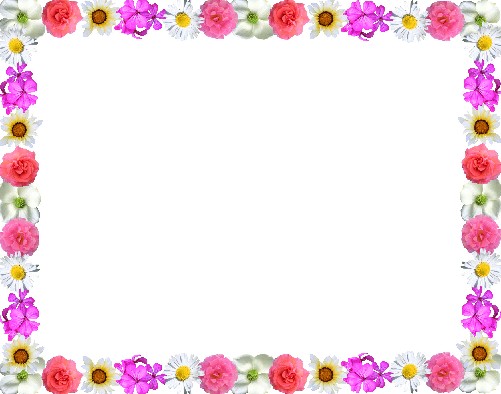 Simple Flower Design Border - ClipArt Best
