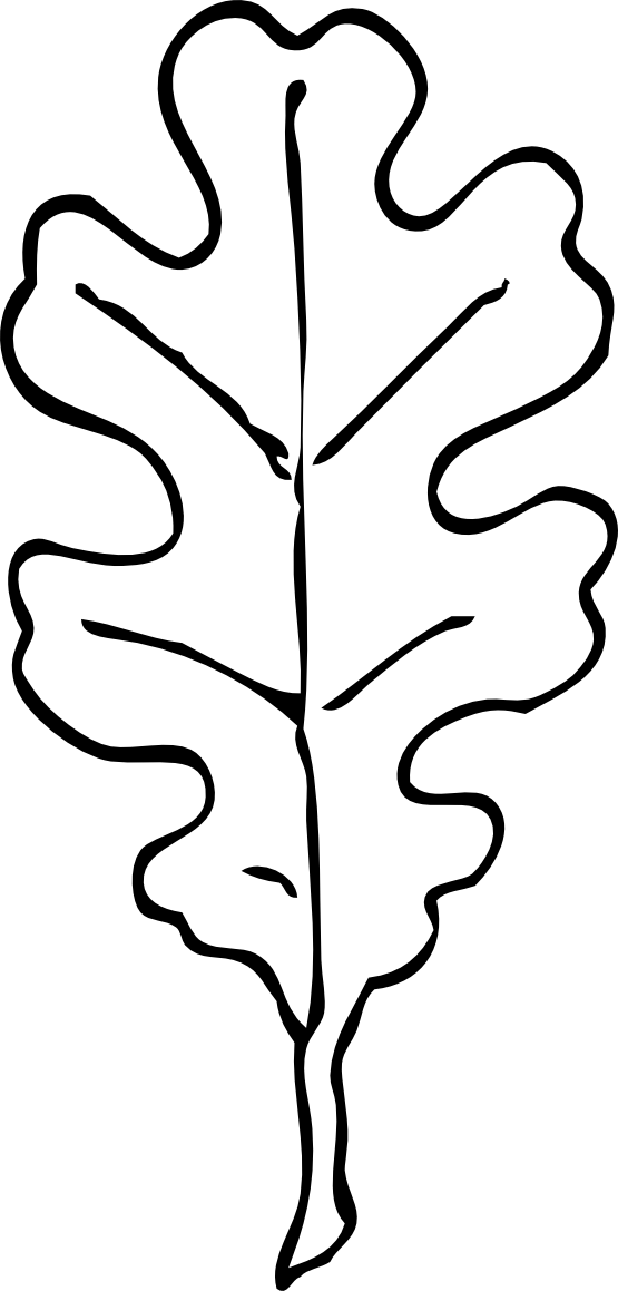 oak leaf coloring pages - photo #12