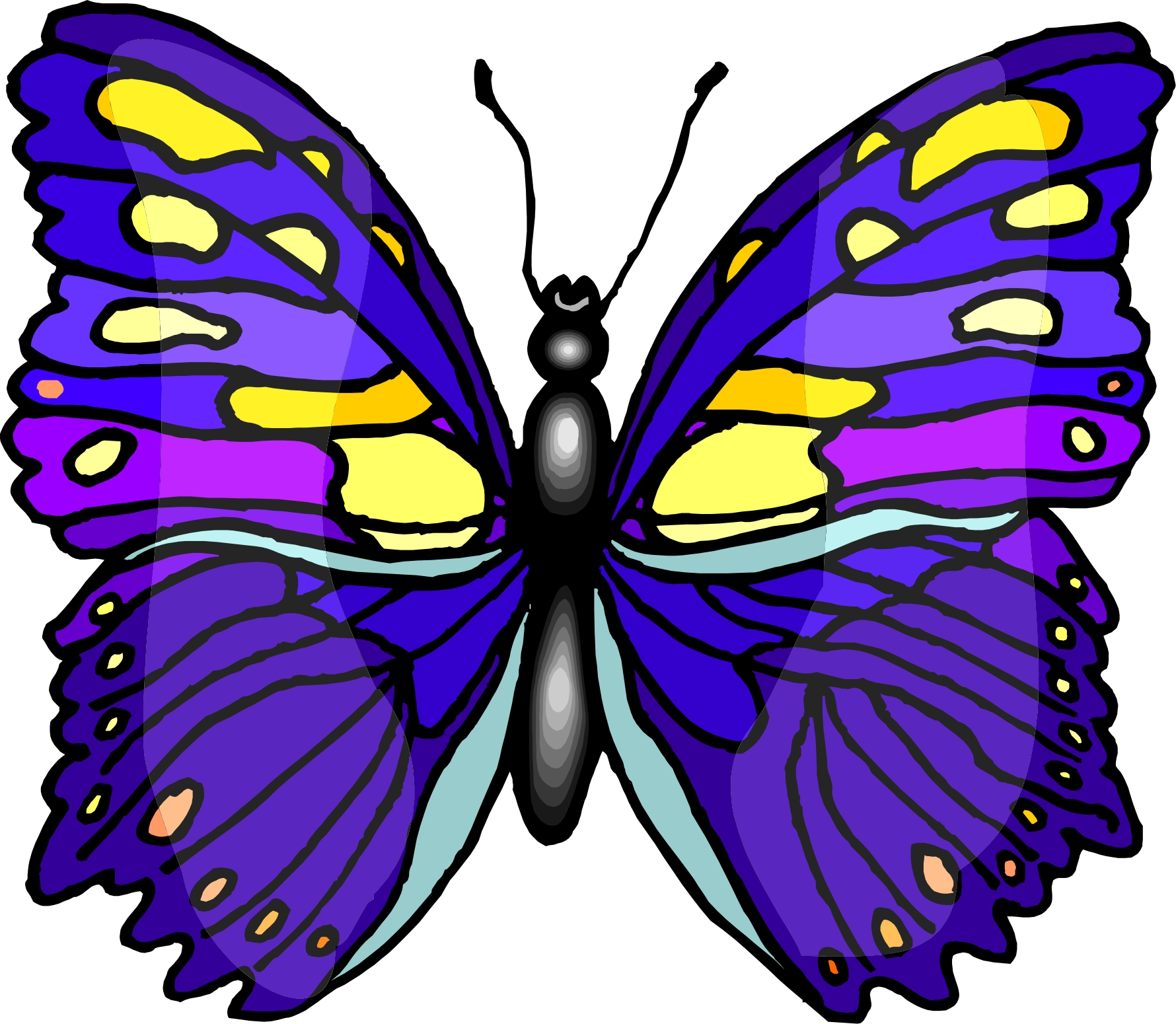 Butterfly Cartoons Images ClipArt Best