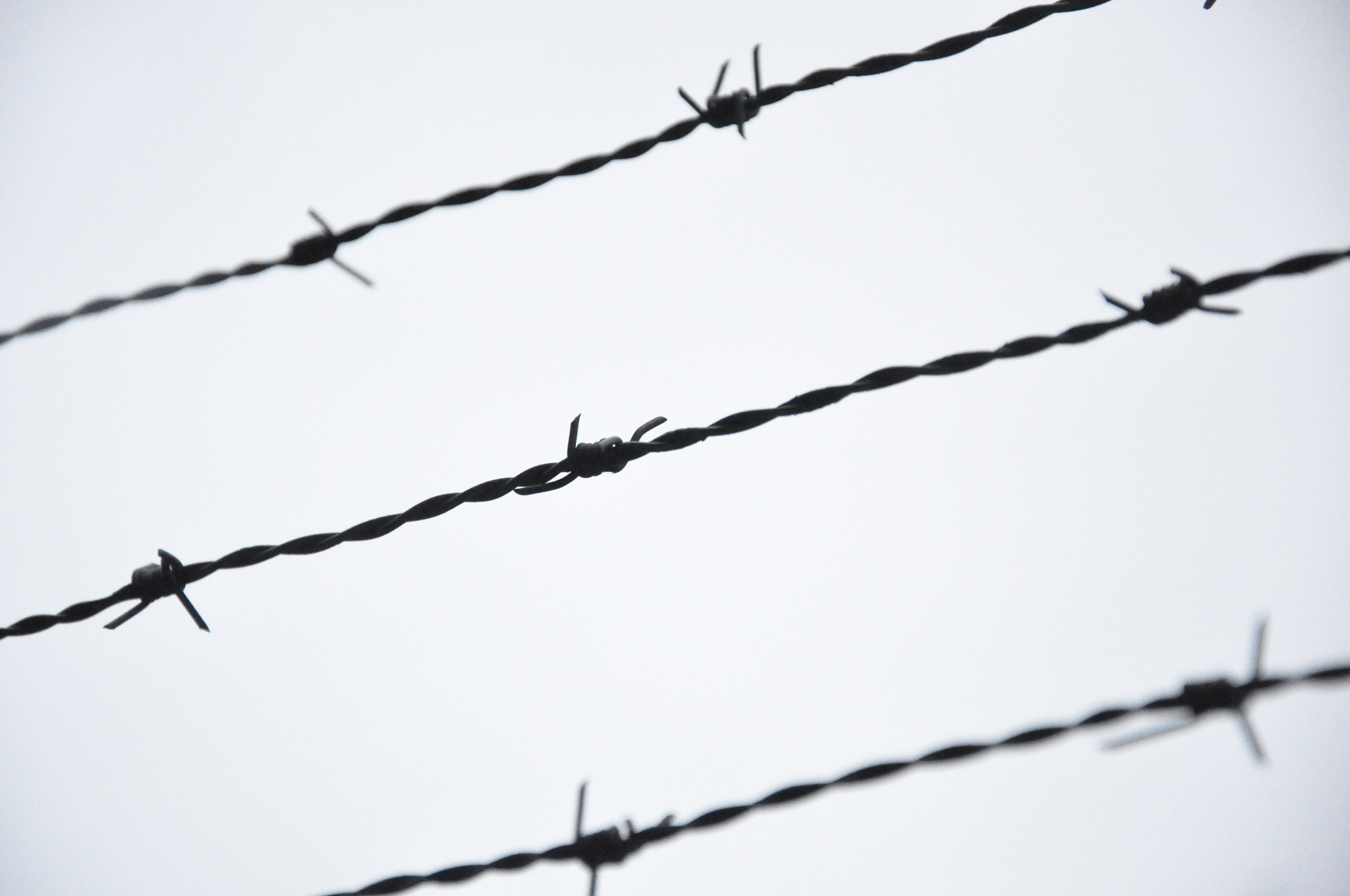 barbed wire Smooth-wire fencing was in general use when the first practical barbed wire  in  1874 joseph glidden patented a more marketable obvious barbed wire (with.