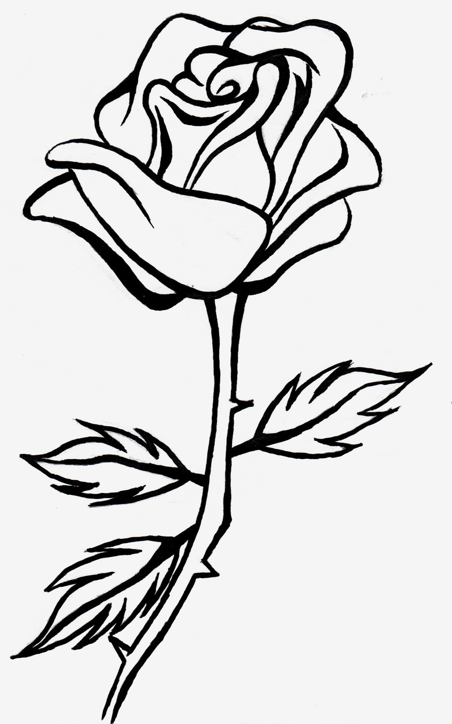 Black Rose Drawing - ClipArt Best