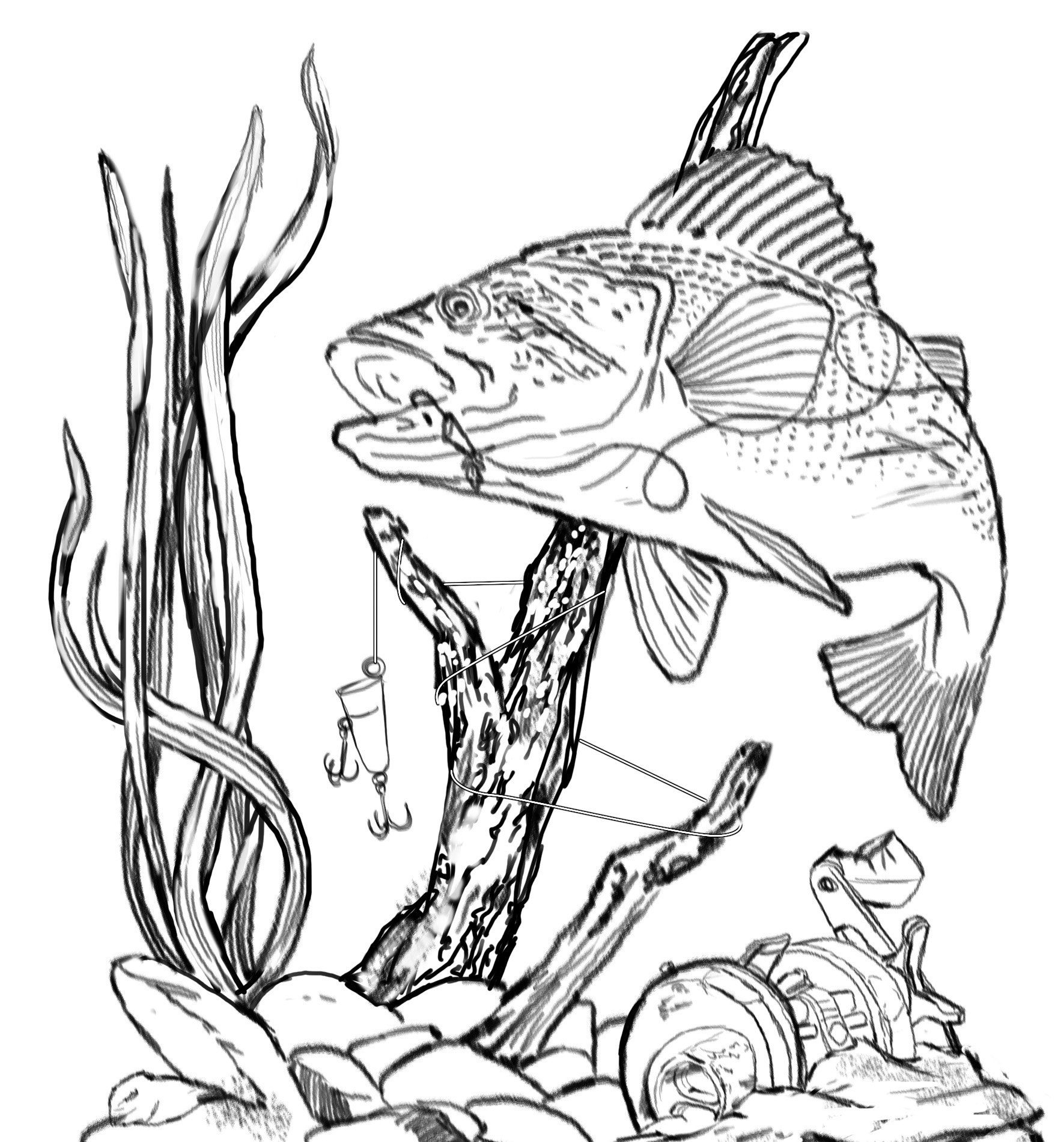 Simple Fish Line Art : Fish drawing clipart best