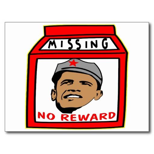 milk carton missing person template .