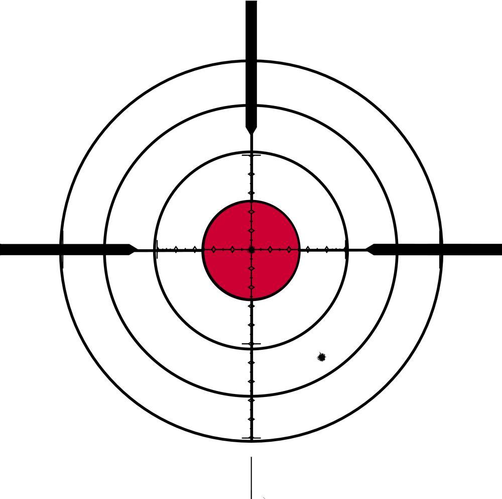 Printable Bullseye Shooting Targets - ClipArt Best