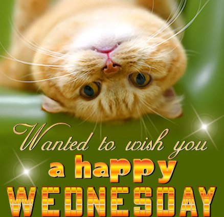Happy Wednesday Clipart - ClipArt Best