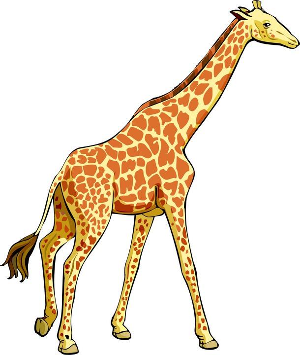 Cute Giraffe Cartoon Clipart Best