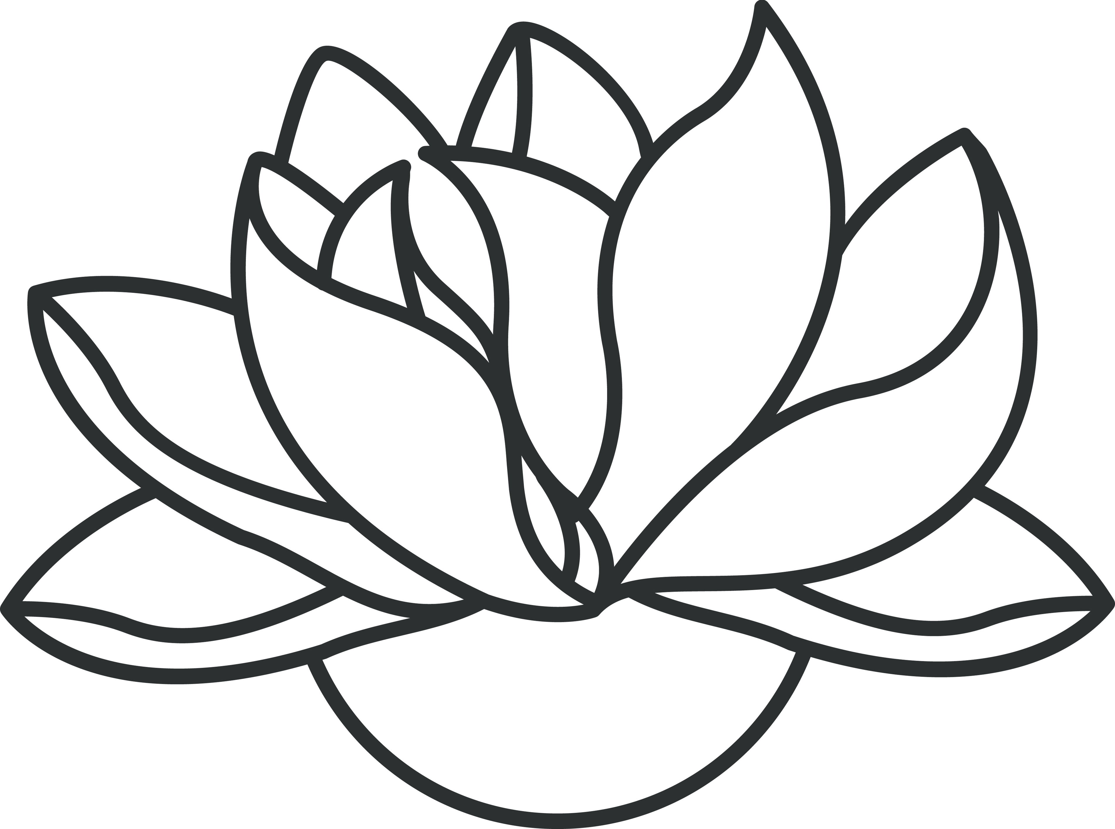 Line Art Flower Drawing : Flower line drawing clipart best