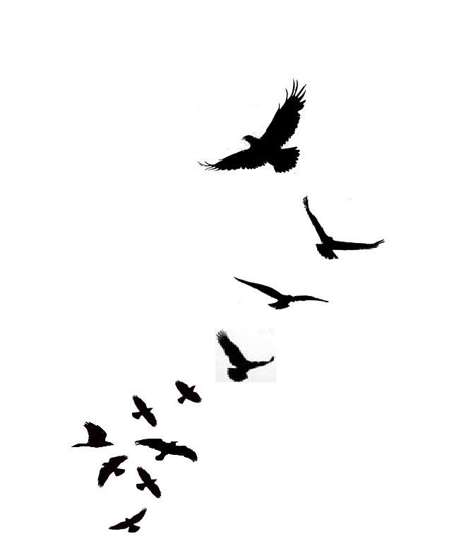 Freedom Bird Tattoo - ClipArt Best
