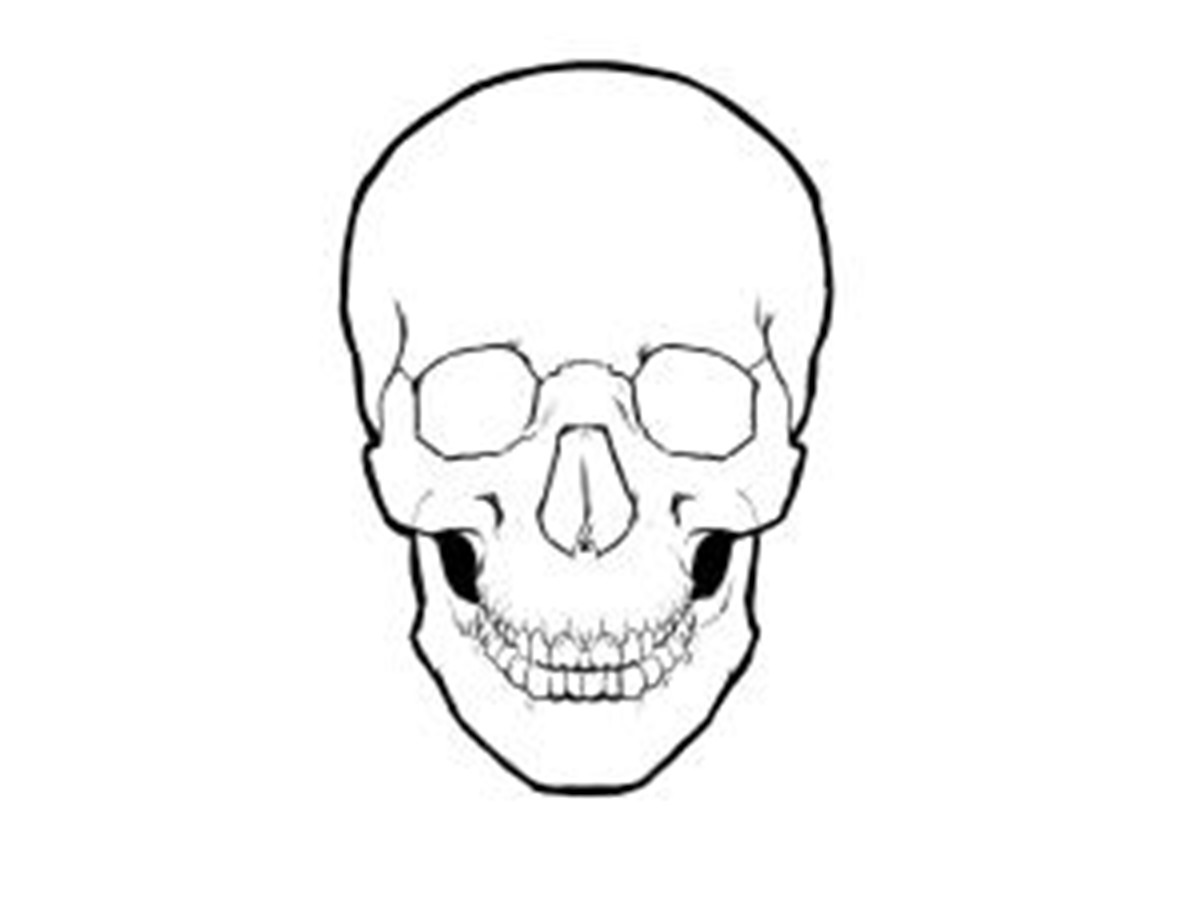 Simple Skull Drawings - ClipArt Best