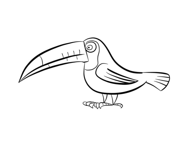 Toucan Bird Outline