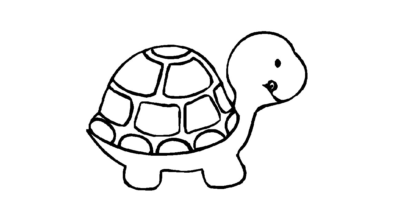 Line Drawing Sea Turtle : Turtle line drawings clipart best