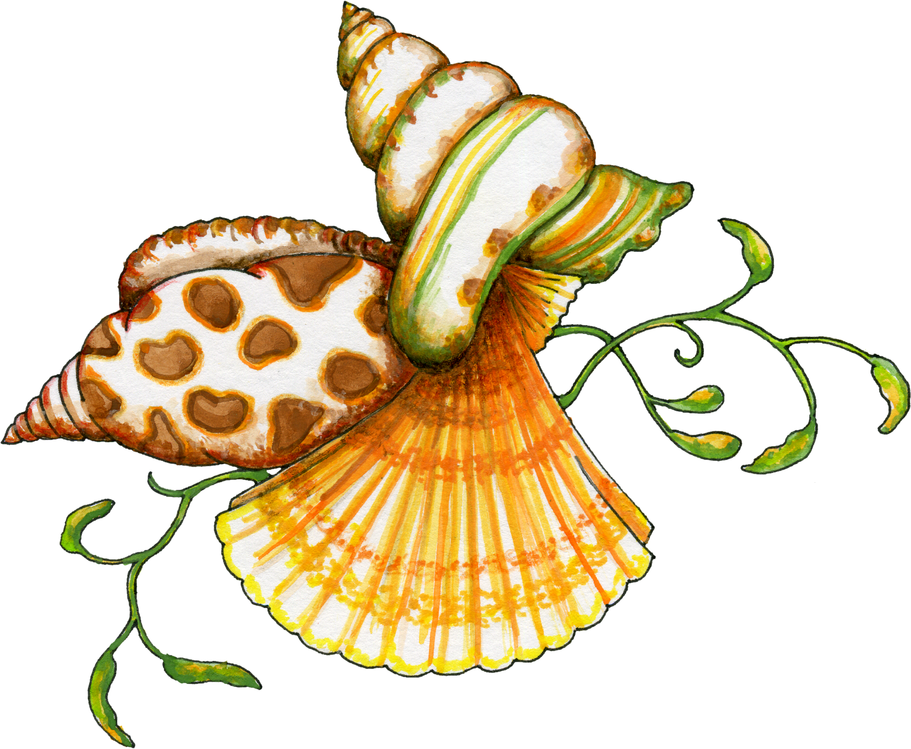 Free Clip Art Sea Shells - ClipArt Best