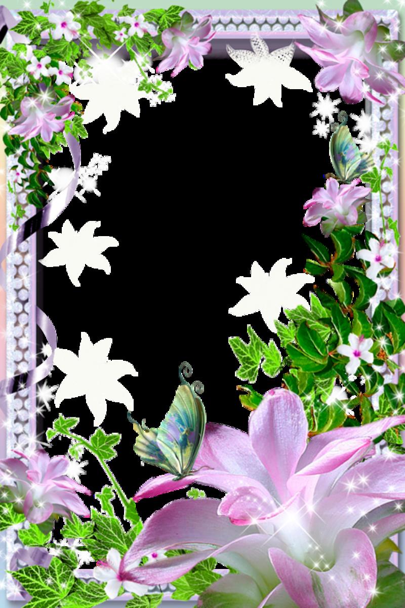 of floral frames - photo #45