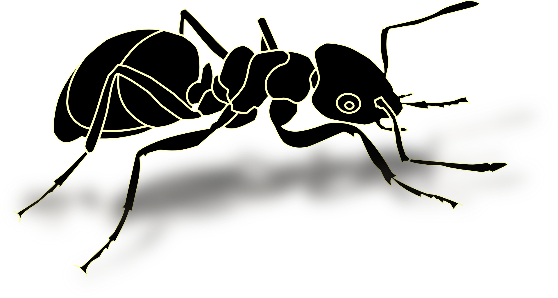 Black Ant Clipart Find the perfect clip-art?