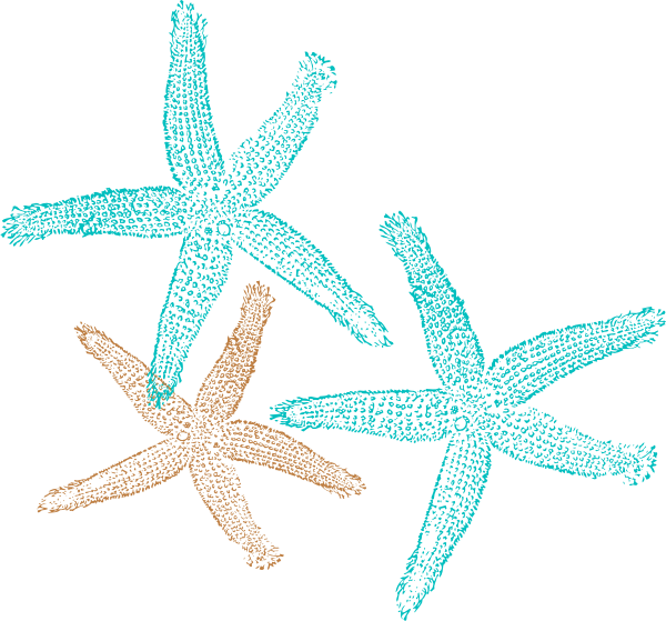 Can t find the perfect clip-art Clipart Starfish