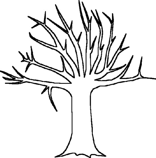Tree No Leaves Coloring Page X - ClipArt Best - ClipArt Best