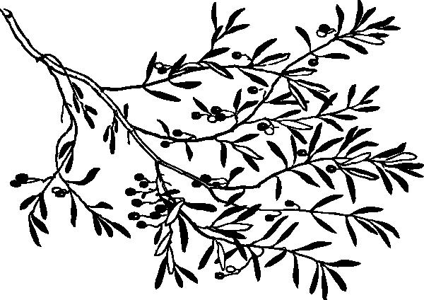Black And White Olive Branch Clip Art Vector Clip Art