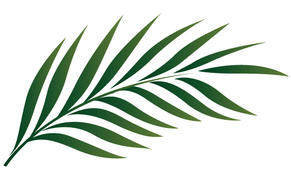 Palm Sunday Leaf Outline