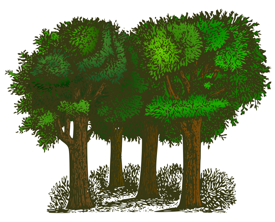 Colorized Group of Trees SVG Vector file, vector clip art svg file ...