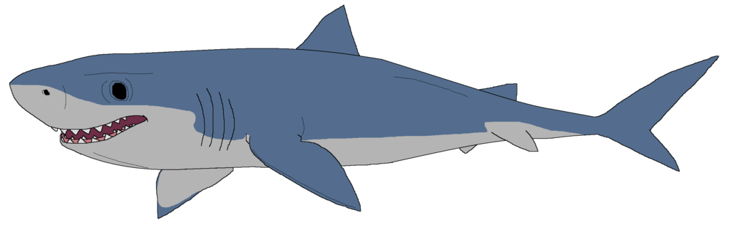 how to draw a cute megalodon