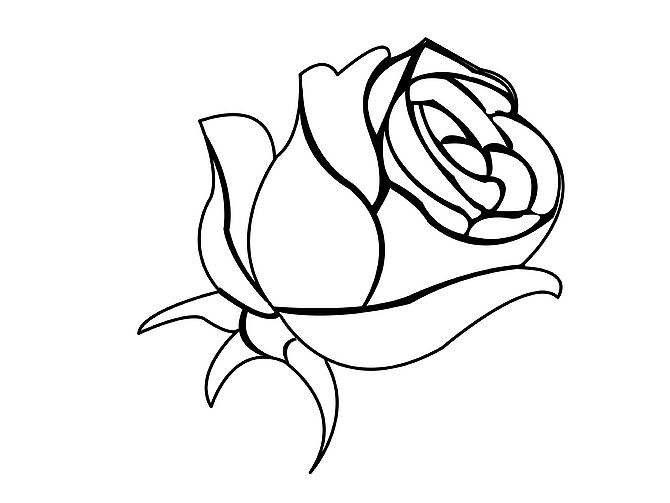 Roses sketch clipart best for How to draw a black and white rose