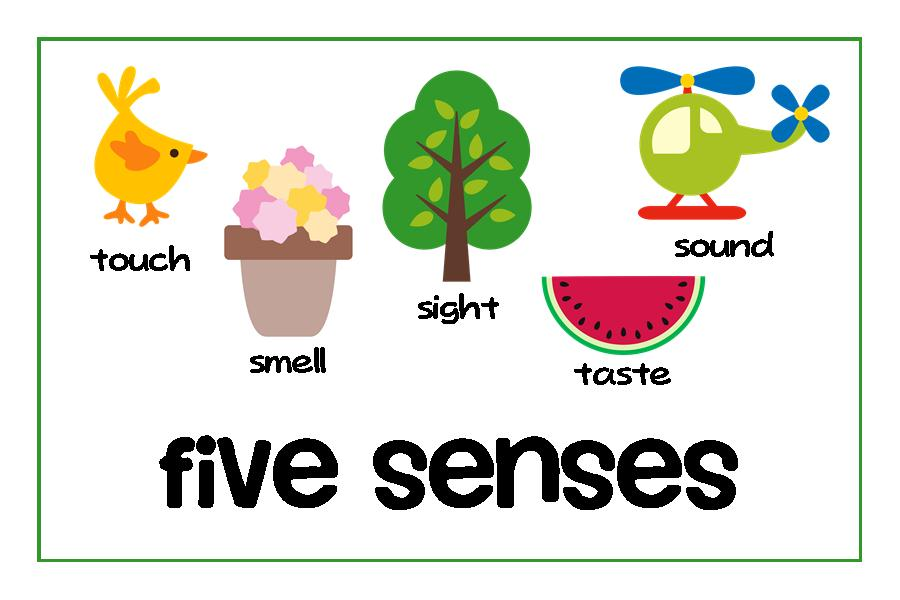 Five Senses Clipart - ClipArt Best