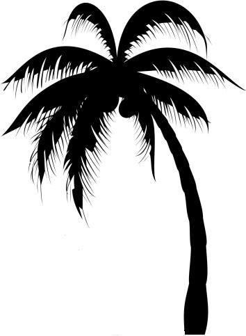 palm tree design clipart best. Black Bedroom Furniture Sets. Home Design Ideas