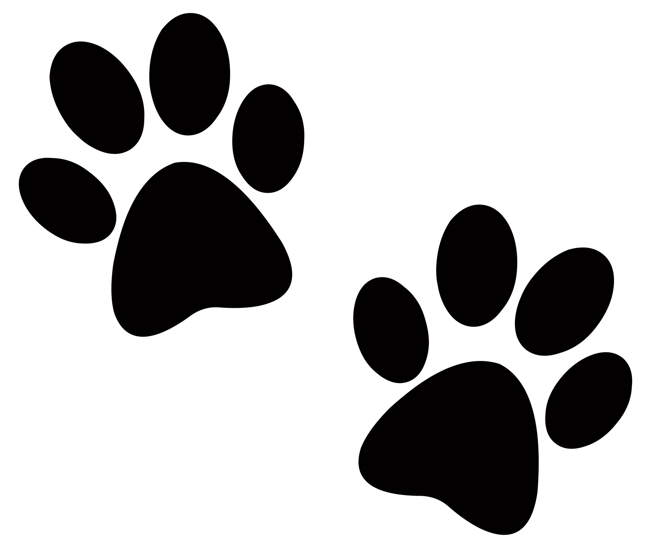 dog paw prints in -#main
