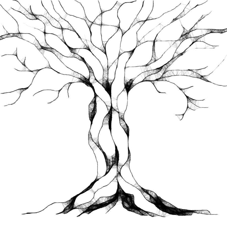 Drawings of trees clipart best for Best tree drawing