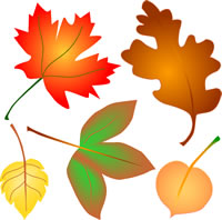 Autumn Leaves Clip Art, Fall Foliage 4 Seasons Graphics