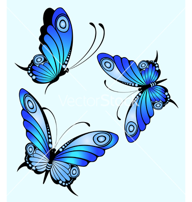 design of butterfly clipart best