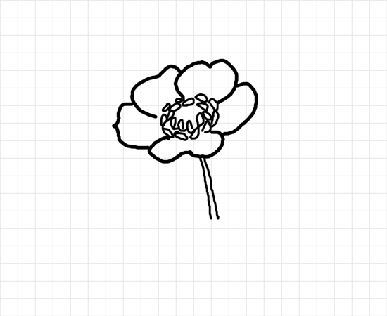 Poppy drawings clipart best for Poppy drawing step by step