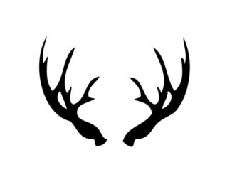 Antler Vector Design together with 345018021427752027 together with Deer Rack also Deer Head Outline in addition Deer 20clipart 20simple. on whitetail deer silhouette outline