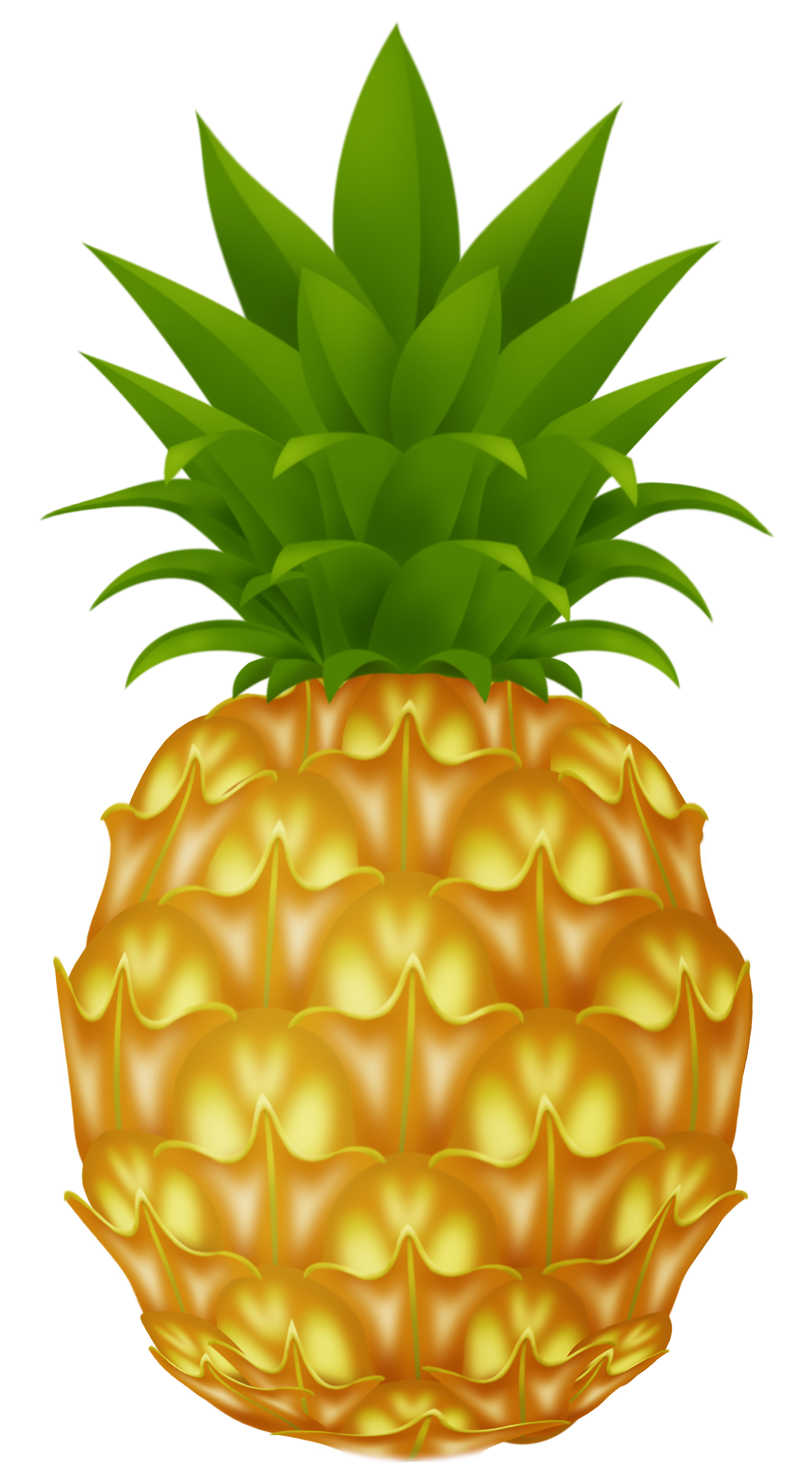Pineapple - ClipArt Best